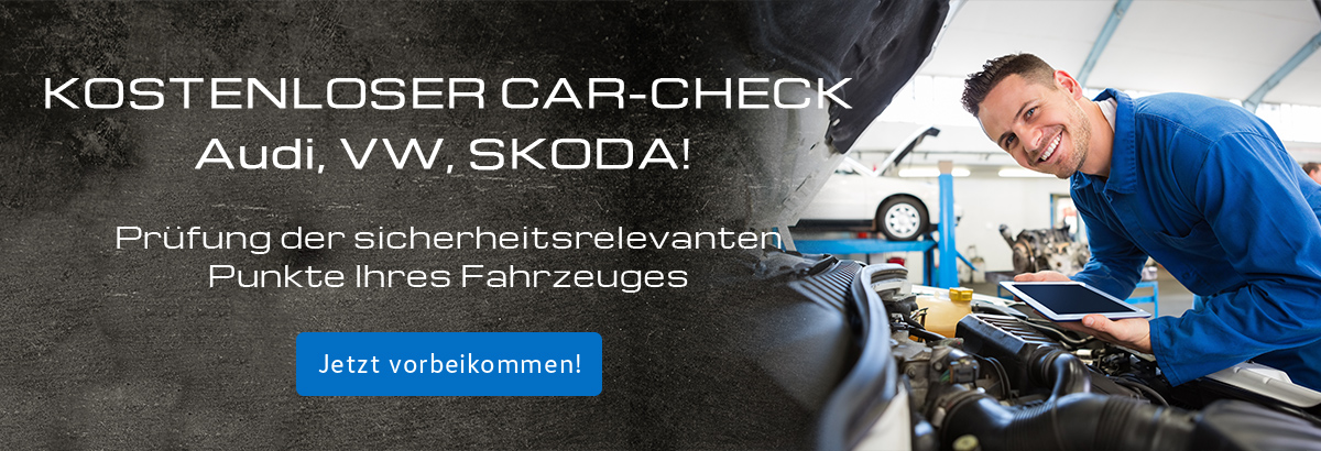 Serviceangebot Car-Check